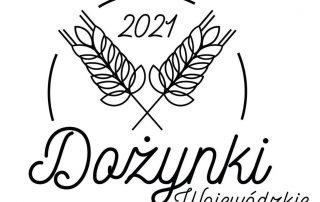 logo dyżynki wojewódzkie